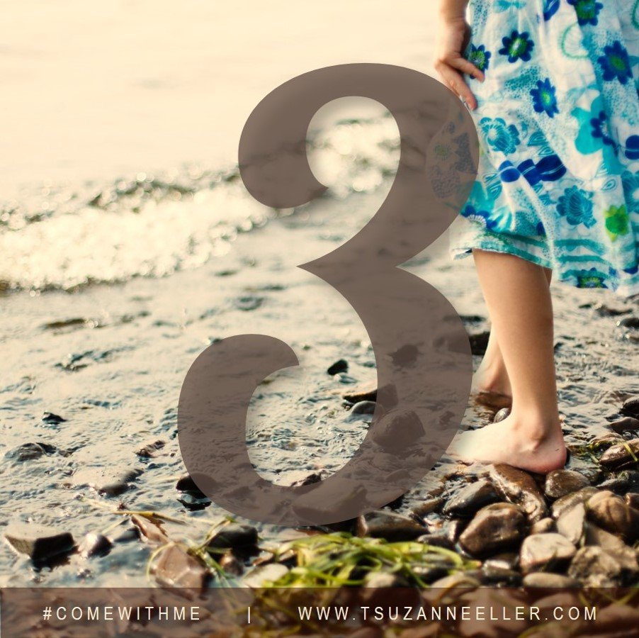 3 more days until #comewithme by Suzanne Eller releases!