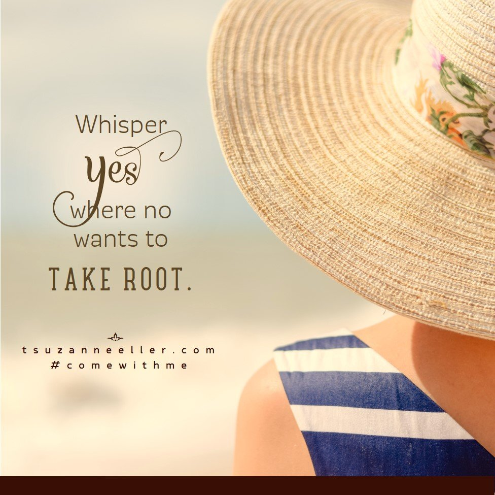 share 1 whisper yes